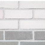 Facing bricks and brick-slips